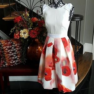 Classic Micla Ted Baker Dress. Size 0 and NWOT